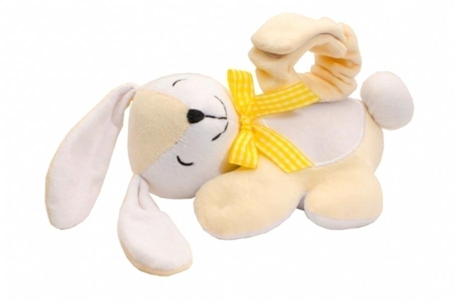 bunnyWebMain